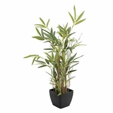 Nep bamboeplant in pot 60 cm