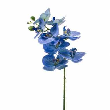 Nep planten blauwe phaleanopsis vlinderorchidee kunstbloemen 70 cm de