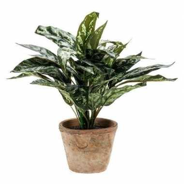 Nep planten groene aglaonema 35 cm met pot
