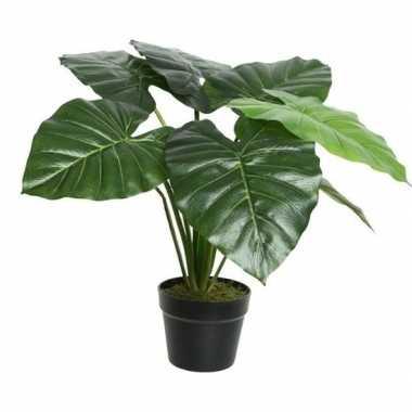 Nep planten groene taro kunstplanten 52 cm met zwarte pot