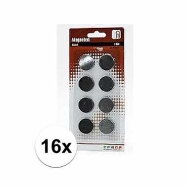 Roestvrijstalen magneten 16 stuks