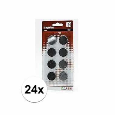 Roestvrijstalen magneten 24 stuks