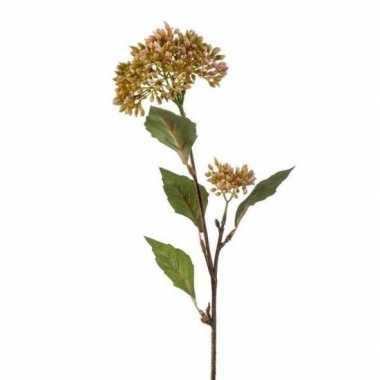 Sedum vetkruid decoratie kunstbloem tak 62 cm