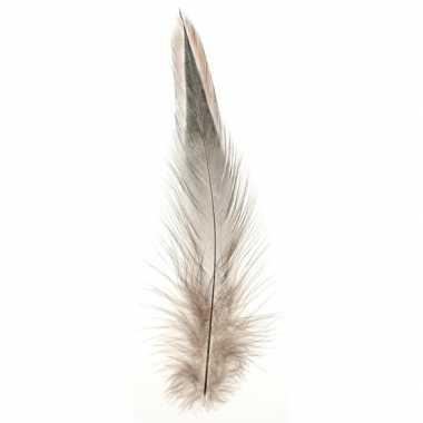 Vogelveren decoratie materiaal natuurtinten 15 stuks