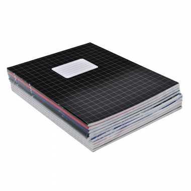 Voordeelpakket 10x a5 ruitjes schriften gekleurd 10 mm