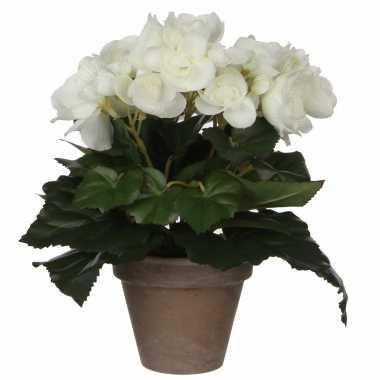 Witte begonia kunstplant 25 cm in grijze pot