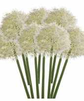 10x witte kunst allium sierui kunstbloemen 65 cm decoratie