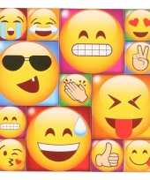 13x smiley emoticon magneetjes emoji type 3