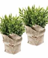 2 stuks groene kunstplanten muizendoorn kruiden plant in pot