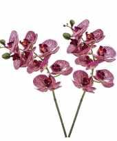 2 stuks nep planten fuchsia roze phaleanopsis vlinderorchidee kunstbloemen 70 cm decoratie