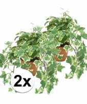 2x groen witte kunstplant klimop plant in pot 10110275
