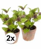 2x groene kunstplant salie kruiden plant in pot