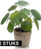 2x groene kunstplanten pilea plant in pot 25 cm