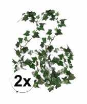 2x klimop slinger groen hedera helix 180 cm