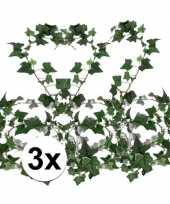 3x klimop slinger groen hedera helix 180 cm