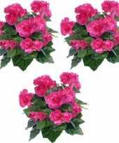 3x kunstplanten begonia roze 30 cm