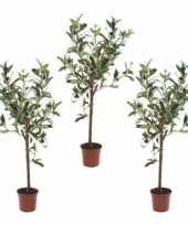 3x olijfbomen kunstplanten kunstbomen 65 cm in kunststof plantenpot