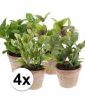 4 kunstplant tuinkruiden in potjes salie munt laurier basilicum