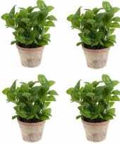 4x groene kunstplant basilicum kruiden plant in pot