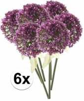 6 x kunstbloemen steelbloem roze paarse sierui 70 cm