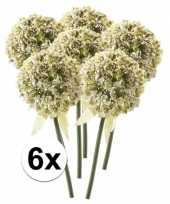 6 x kunstbloemen steelbloem witte sierui 70 cm