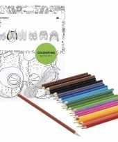 6x maskers om in te kleuren met potloden voor kinderen