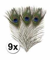 9x pauwenveren 25 cm