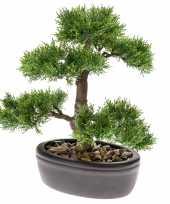 Bonsai boompje cedrus atlantica glauca kunstplant in kunststof pot 32 cm