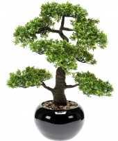 Bonsai boompje ficus retusa kunstplant in kunststof pot 47 cm