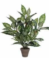 Groene dieffenbachia kunstplant 70 cm met pot