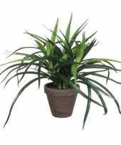 Groene kunstplant dracaena plant in pot 34 cm