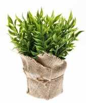 Groene kunstplant muizendoorn kruiden plant in pot