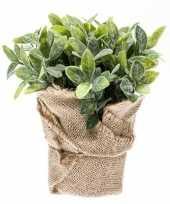 Groene kunstplant munt kruiden plant in pot 10113273