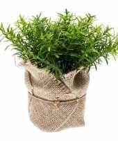Groene kunstplant tijm kruiden plant in pot