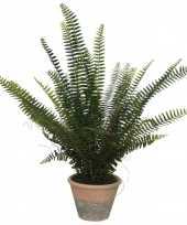 Groene varens kunstplanten nepplanten 60 cm