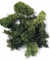 Ijslands mos donkergroen 200 gram 10122524