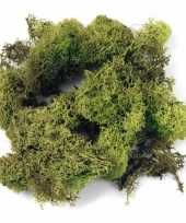 Ijslands mos lichtgroen 100 gram