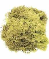 Kerststukje herfststukje mos lichtgroen 50 gram