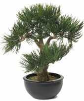 Kunstplant bonsai 33 cm