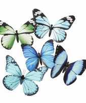 Magneet vlinder blauw groen 13 5 cm